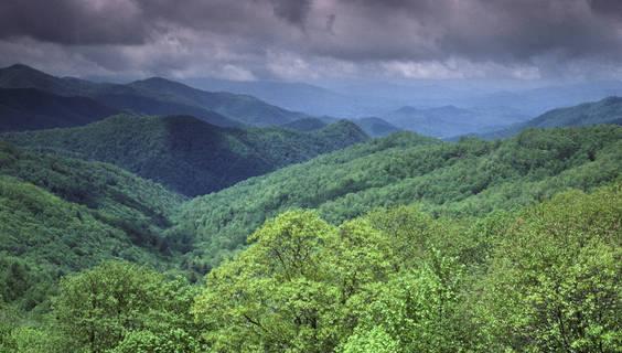 Lesbischer Erholungsort in Tennessee
