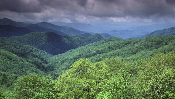 Great Smoky Mountains National Park, Tennessee.  © Christian Heeb